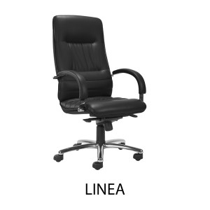 Linea Executive Operators Chair Peter Walsh Amp Sons